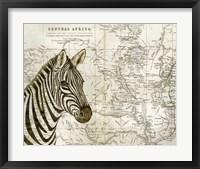 Framed Burchell's Zebra