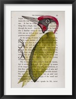 Framed Green Woodpecker