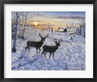 Framed Two Deer In The Moonlight