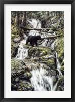 Framed Bear Creek Crossing