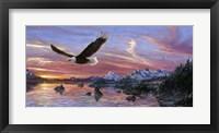 Framed Silent Wings Of Freedom