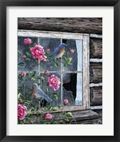 Framed Roses & Bluebirds