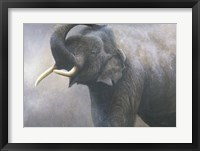 Framed Asian Elephant Dusting