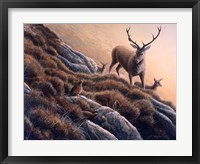 Framed Deer And Grouse