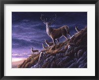 Framed Threatening Sky Red Deer