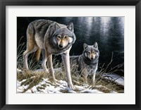 Framed Over The Ridge Wolves
