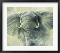 Framed Storm Elephant