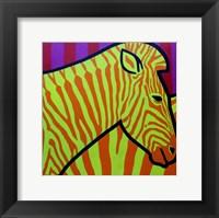 Cadmium Zebra 2 Framed Print