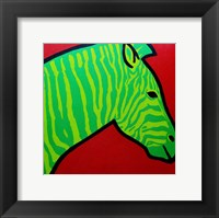 Irish Zebra Framed Print