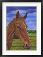 Framed Field Horse
