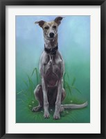 Framed Lurcher Jaeger