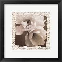 Framed Woven Magnolia  I