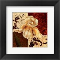 Framed Fiori Iris