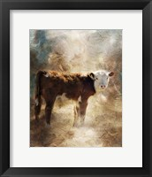 Framed Calf In The Sunday Sun