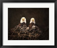 Framed Family Is Forever Bald Eagles
