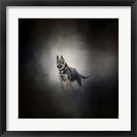 Framed German Shepherd Puppy Feet First