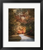Autumn Passage 1 Framed Print