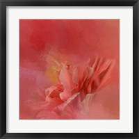 Framed Salmon Hibiscus 3