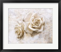 Vintage Rose 4 Framed Print