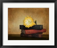 The Classics Framed Print