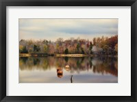 Autumn At Lake LaJoie 3 Framed Print