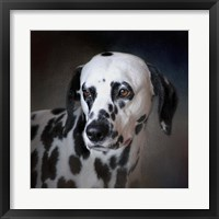 Framed Firemans Dog Dalmatian