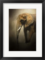 Framed Elephant Emerges