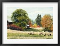 Framed Autumn Colours