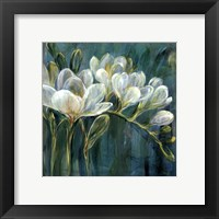 Freesia Blues II Framed Print