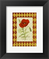 Framed Adorned Poppy 1