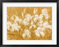 Framed Irises II