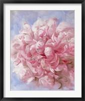 Pink Peonie I Framed Print