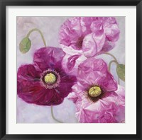 Framed Purple Poppies I