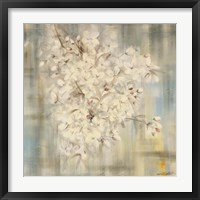 Framed White Cherry Blossom I