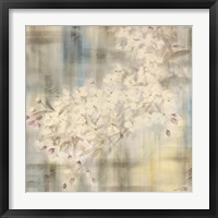 Framed White Cherry Blossom IV