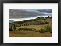 Framed Italy V