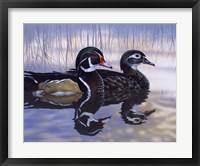 Framed Just Ducky