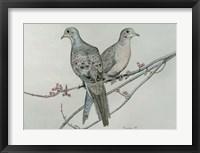 Framed Two Birds On Branch