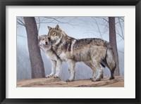 Framed Two Wolves