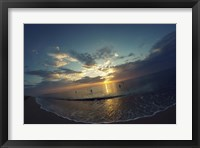 Framed Cypress Sunrise II