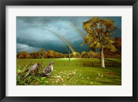 Framed Cades Cove Rainbow