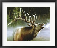 Framed Elk In Mist