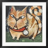 Square Cat Framed Print