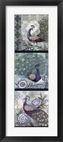 Framed Peacock Blues