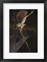 Framed Tight Rope Barn Owl
