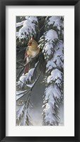 Framed Winter Light 2