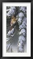Framed Winter Light 2
