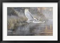 Framed Sunrise Flight