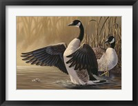 Framed 1994 Canada Geese