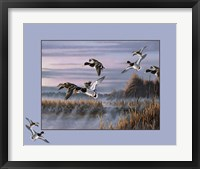 Framed Ducks In Flight 1